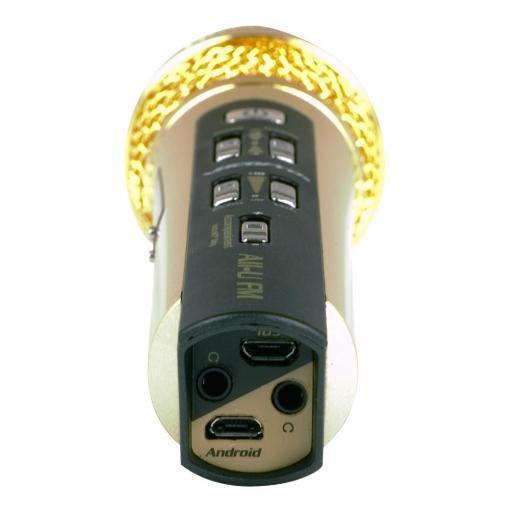 all-u-karaoke-fm-mic-2 PIC 2.jpg